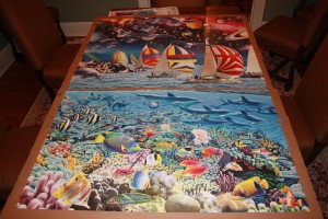 "Life 24,000 piece puzzle - Section ""C"" bottom"